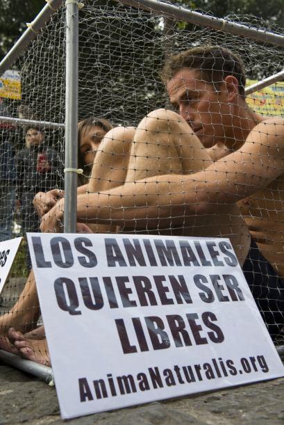El acto de los activistas semisdesnudos tenía como finalidad hacer un ll...
