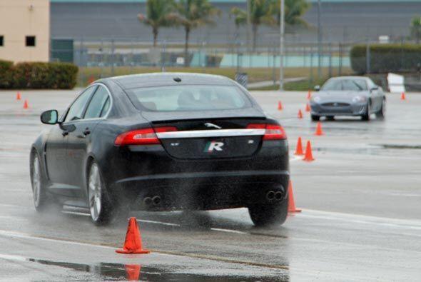 El director de la Jaguar Performance Academy informó que solo 25% de los...