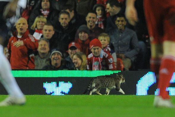 Pero no fue el único que llamó la atención en Anfield. ¿Qué les parece e...