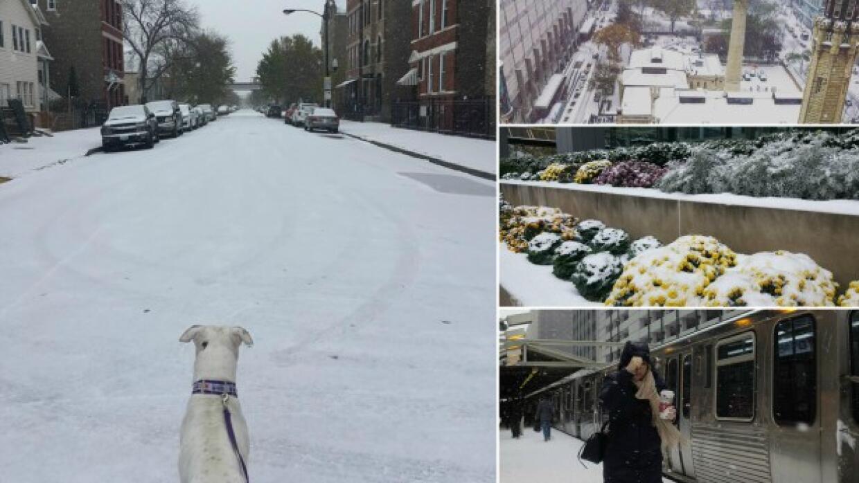La Ciudad de los Vientos se pintó de blanco este viernes con la p...