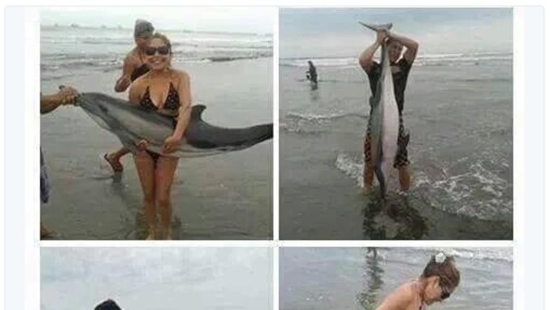 Los bañistas del delfín no son los únicos que dan vergüenza FOTO%202.png