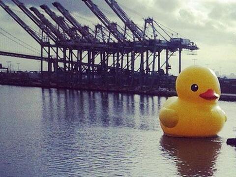 El Patito Gigante, mejor conocido como el # #RubberDuck ya llegó...