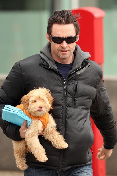 Sin duda, el protagonista de la saga 'X-Men' se ve adorable con su cacho...