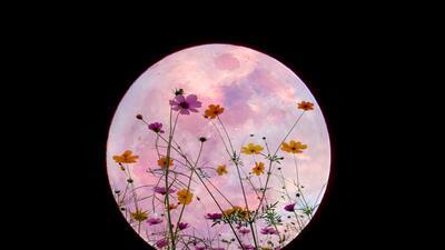 Llegó la 'Luna de las flores', el plenilunio de mayo en el elemento fuego
