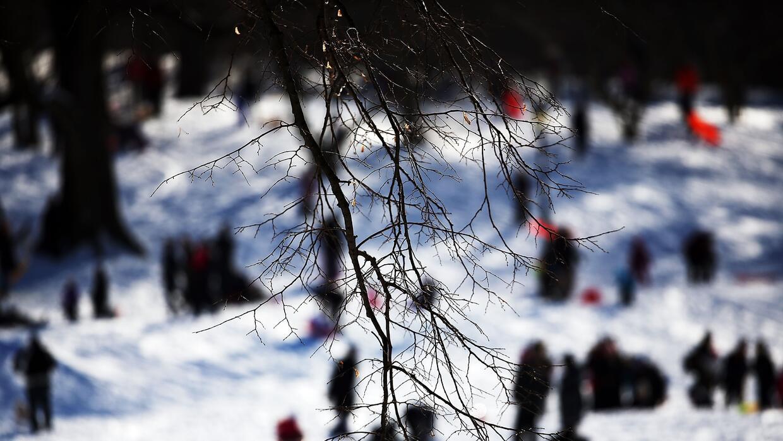 Los neoyorquinos disfrutan la nieve durante la ventisca que afectó a la...
