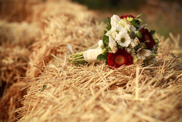 Un detalle encantador para una boda en esta época del año es recurrir a...