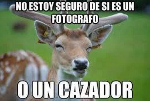 """""""No estoy seguro de si es un fotógrafo o un cazador""""."""