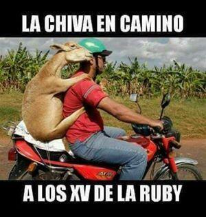 Los mejores memes (y alguno muy malo) de Rubí 15400905_856072431161922_5...