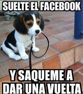 """""""Suelte el Facebook y sáqueme a dar una vuelta""""."""