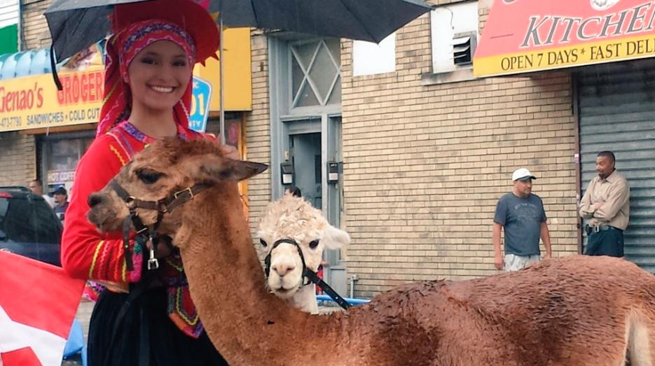 Una hermosa peruana desfiló con las reinas de los Andes, las llamas.