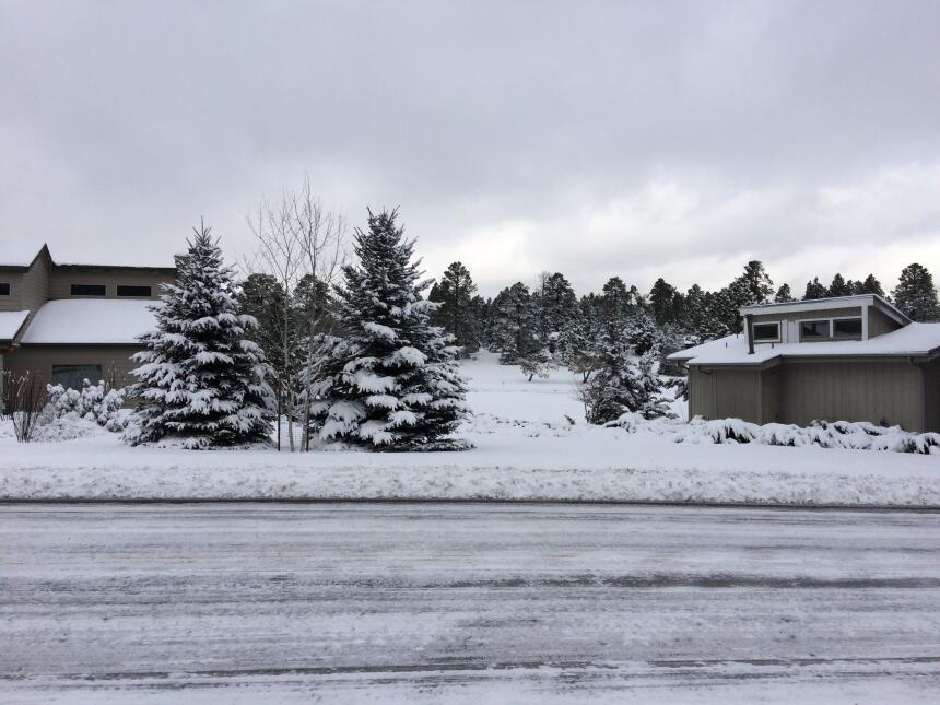 En fotos: La ciudad de Flagstaff amaneció cubierta de nieve IMG_3809.JPG