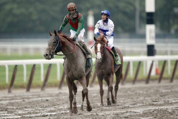 El reconocimiento de la pista es importante para los caballos que concur...