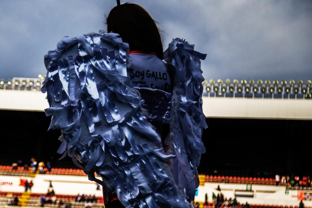 Los Xolos liquidaron a los Gallos en el Estadio Corregidora 20170412_321...