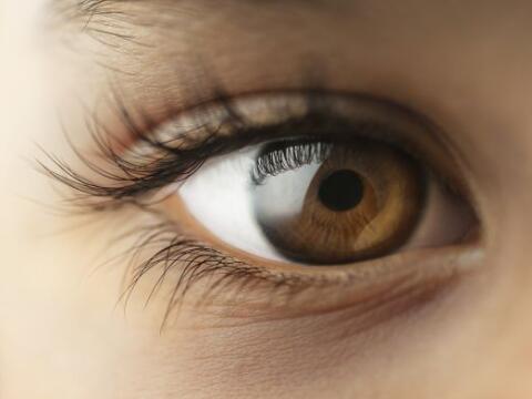 Una mirada nos indica ternura, o miedo, desprecio o admiración, o...