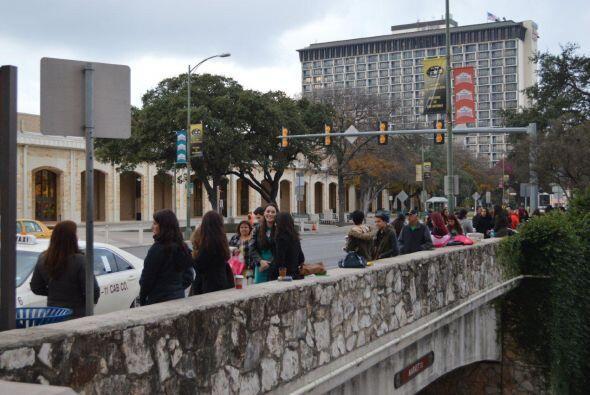 Las chicas más bellas de San Antonio se dieron cita en el Hotel M...