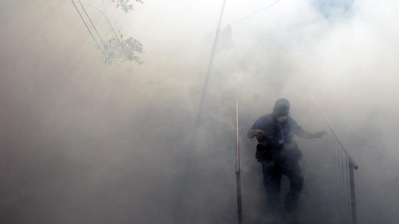 La fumigación intenta frenar la propagación del mosquito.