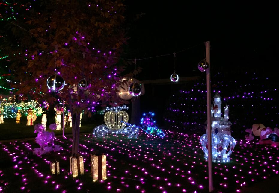 En fotos: Un recorrido por el Festival de luces Winterhaven que colorea...