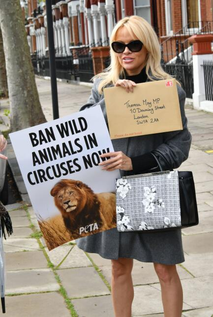Pamela en defensa de los animales.