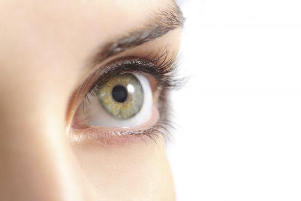 La vista: ese sentido que tanto usamos ¡y apreciamos! Para cuidarla, emp...
