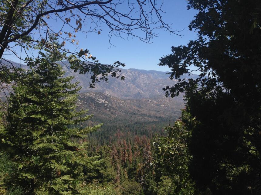 Panorámica del Bosque Nacional Sequoia.