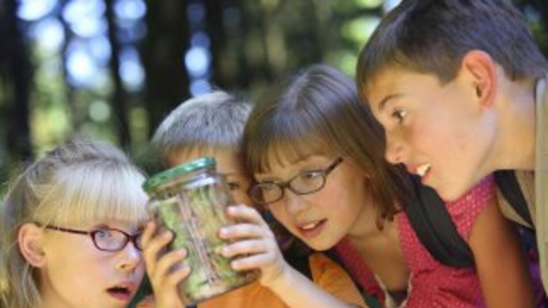 Aprende a investigar como un científico en nuestro campamento de verano...