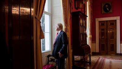 En fotos: El desconocido trabajo de la nueva fotógrafa oficial de Donald Trump