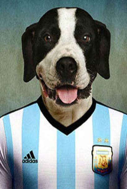 Argentina - Dogo Argentino     Fuente: lifeonwhite.com