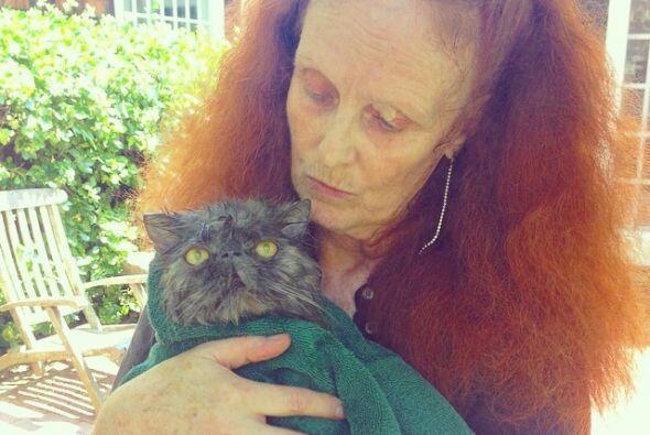 Grace ama a sus dos gatitos persa, Pumpking y Barth.