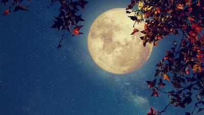 La Luna llena de junio trae buenas noticias para todos los signos
