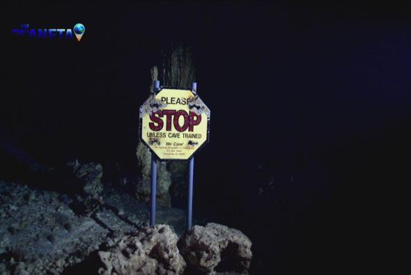 En ciertas zonas de los cenotes existen letreros que alertan a los buzos...