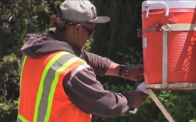 La ley de California protege a todos los trabajadores que laboran bajo e...