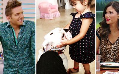 Baby Giulietta está loca de amor por Benito, el perro de su padrino El Dasa