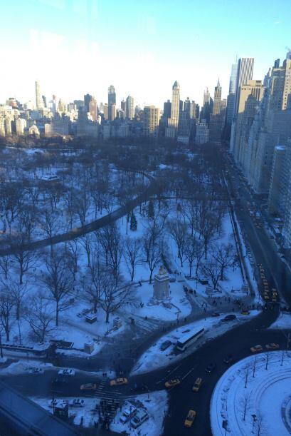 El Central Park lució una belleza muy nevada.