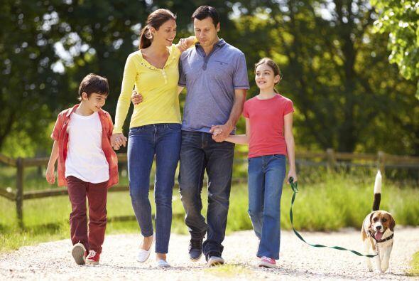 ¡Te toca a ti! Sugiere actividades y rutinas para organizar tu familia l...