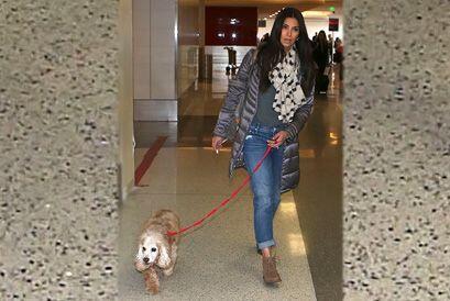 Roselyn Sánchez y Eric Winter se van de viaje con su hija, Sabell...