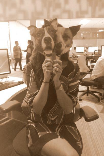 Esta son las mascotas de este talento de Noticias Univision. ¿Lo reconoc...