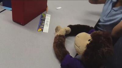 Escuelas de Arizona activan un programa para usar un peluche para ayudar a estudiantes con cáncer