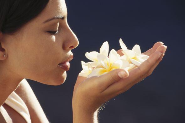 Además es recomendable que te rodees de aromas agradables, por ejemplo,...