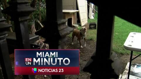 'Miami en un Minuto': al hospital regional de Kendall fue trasladada la...
