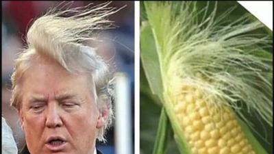 18 memes que resumen los momentos inolvidables de esta campaña presidencial