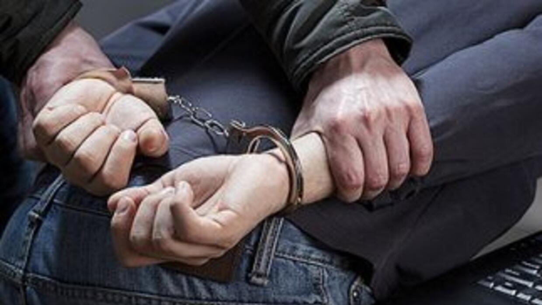 ICE dijo que 287 de los detenidos son hombres y 10 mujeres procedentes d...
