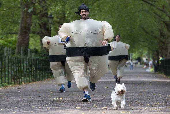 La carrera de sumos ya cuenta con un récord mundial Guinness por el mayo...
