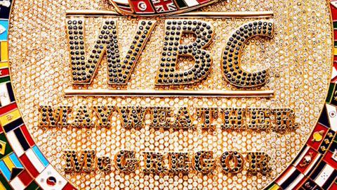 WBC Money Belt