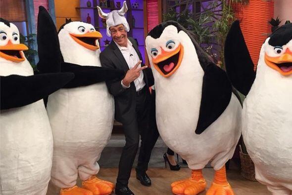 """""""Buenos días mi gente, foto de #lunes con los Pingüinos de #penguinsmovi..."""