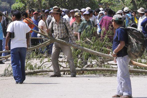 Productores de coca de los Yungas, región agrícola cercana...