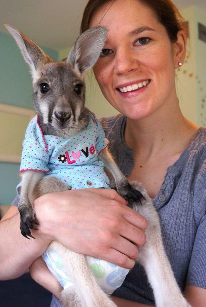 Julia Heckathorn una chica de 28 años de edad, adoptó a Bomeroo en una g...