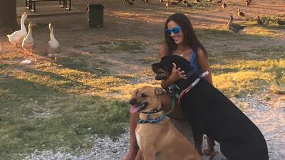María Teresa Guerrero. Haz ejercicio con tu mascota