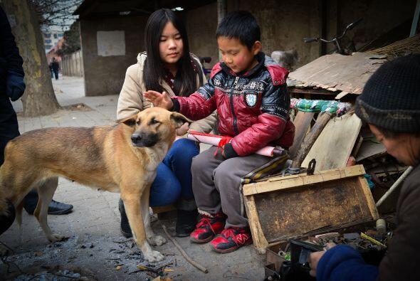 Ahora este perro es querido por todos los habitantes de la zona.