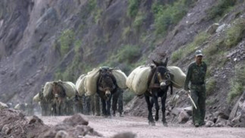 El delincuente viajaba solo y montado en una mula cuando fue localizado...