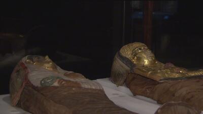 Las momias llegaron a Chicago: La exhibición comenzó este viernes el Museo Field